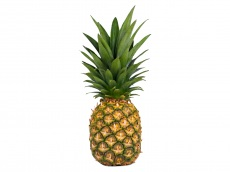 Ananas product foto
