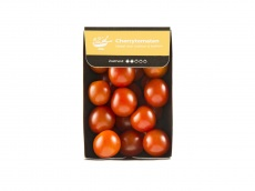 Hollandse cherry tomaten product foto