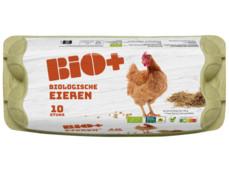 Biologische eieren product foto