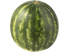 Watermeloen product foto