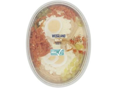 Zalmsalade ambachtelijk product foto