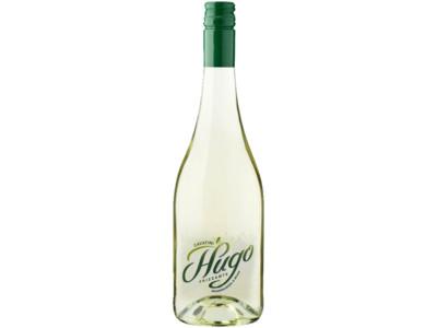 Hugo product foto